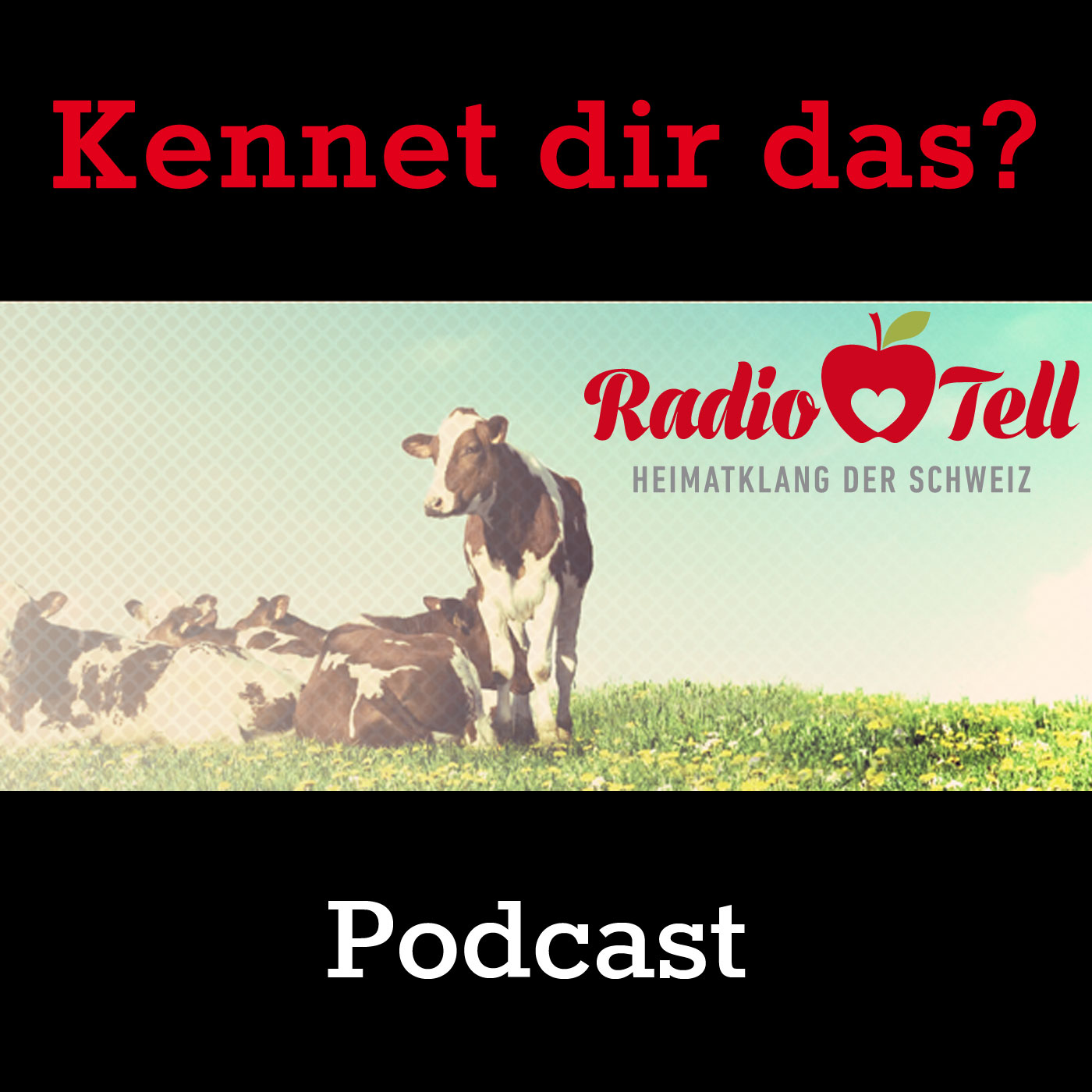 Radio Tell - Kennet dir das